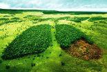 محیطزیست و حقوق بشر