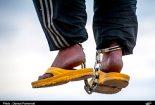 پیشنهاد «بهمن کشاورز» برای کاهش استعمال مواد مخدر در کشور