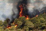 وظیفه دولتها در جبران خسارات وارده به محیطزیست