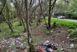 مسؤولیت کیفری ناشی از تخریب و آلودهسازی محیط زیست